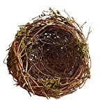 """Grapevine and Dried Moss Bird Nest by Meravic (5.5"""" Diameter)"""