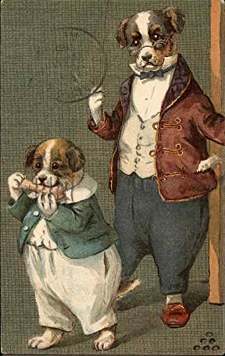 Two Dogs in Suits Dressed Animals Original Vintage Postcard from CardCow Vintage Postcards