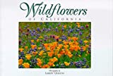 Wildflowers of California, Larry Ulrich, 0944197353