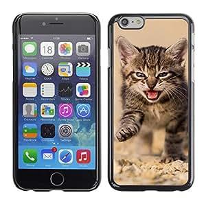 Carcasa Funda Case // V0000943 Cat Kitty Animal Pattern // Apple Iphone 6 4.7