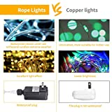 Color Changing Rope Lights: 7 Ft 20 LED Outdoor