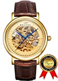 BRIGADA Swiss Watches Luxury Gold Waterproof Watches for Men, Nice Automatic Hollow Mechanical Men's Watch, Great Gift for Someone or Yourself