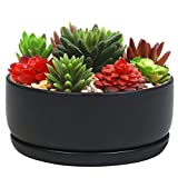 6 Inch Round Black Ceramic Succulent Planter Cactus Pot, Flower Holder Bowl w/ Removable Saucer For Sale