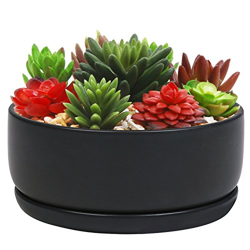 - 6-Inch Round Black Ceramic Succulent Planter Cactus Pot, Flower Holder Bowl w/Removable Saucer