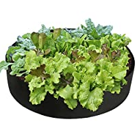 Pannow Raised Garden Bed, Fabric Raised Planting Bed Round Garden Grow Bag for Herb Flower Vegetable Plants (Dia 36