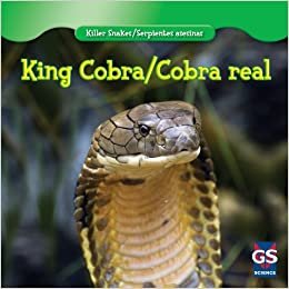 Buy King Cobra Cobra Real Killer Snakes Serpientes Asesinas
