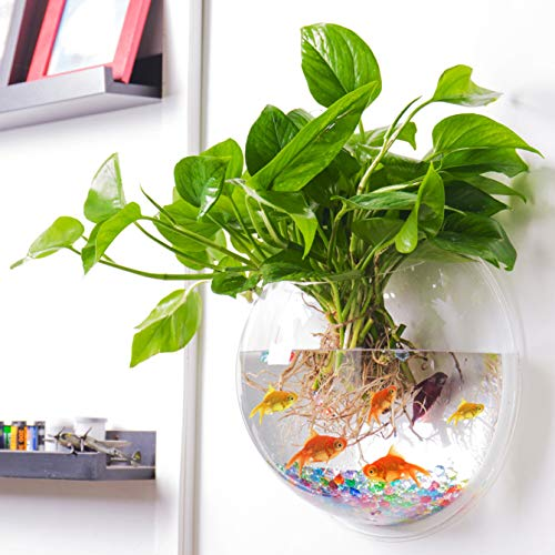 Outgeek Wall Fish Bubble Wall Hanging Bowl Clear Acrylic Vase Flower Plant Pot Aquarium 9in (Water Garden Fish Tank)