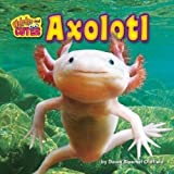 Axolotl (Weirder and Cuter)