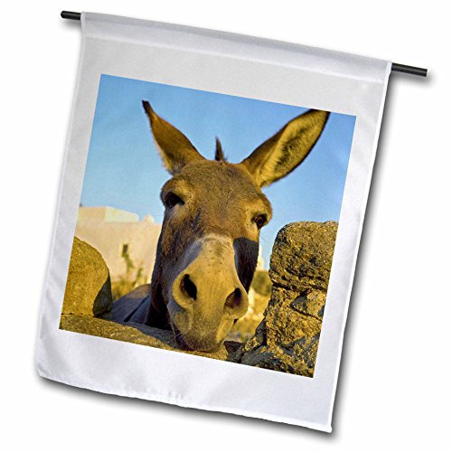 3dRose fl_81827_1 Greece, Mykonos, Hora, Donkey and Stone Fence-EU12 DGU0093-Darrell Gulin Garden Flag, 12 by 18-Inch