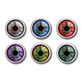 Eyeball Pinback Buttons or Magnets Set of Six 1 Inch