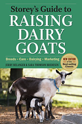 Storey's Guide to Raising Dairy Goats, 4th Edition: Breeds, Care, Dairying, Marketing (Storey's Guide to Raising) by [Belanger, Jerry, Bredesen, Sara Thomson]