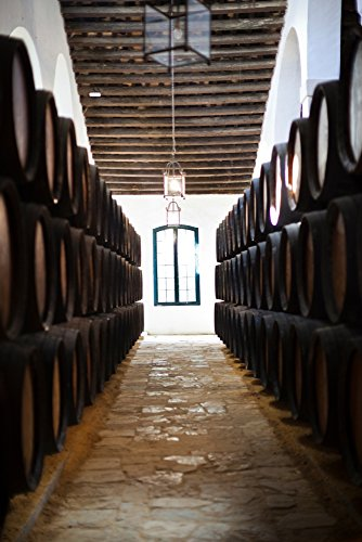 Sherry casks in a winery Gonzalez Byass Jerez De La Frontera Cadiz Province Andalusia Spain Poster Print by Panoramic Images (36 x 24)