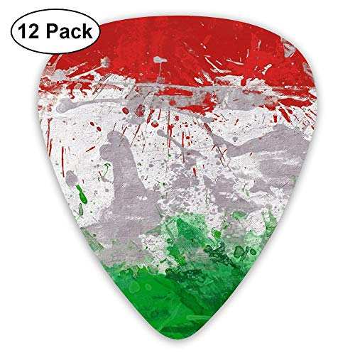 CHAN03 Italian Flag 12 Pieces of Personalized Guitar Picks