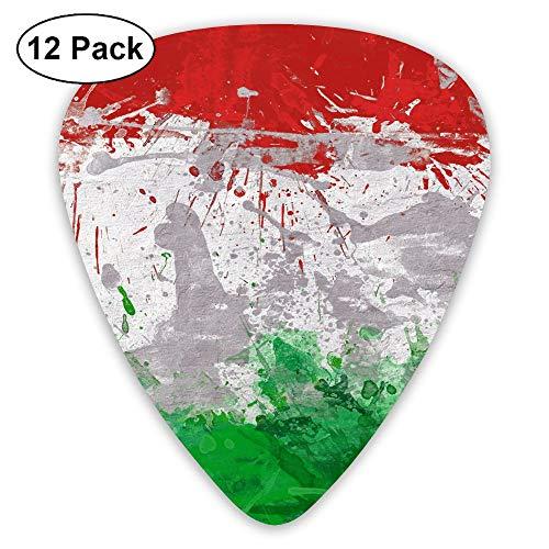 Horizon-t Italian Flag and Football Assorted Celluloid Guitar Picks Plectrums Guitar Bass