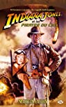 Les Aventures d'Indiana Jones, Tome 7 : Indiana Jones et les pirates du ciel par Caidin