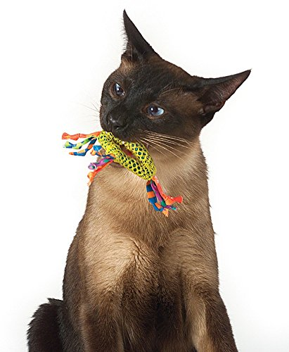 Dental Health Pair Catnip Cat Toys by Petstages