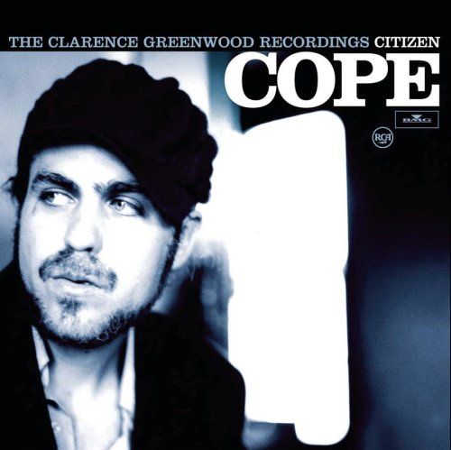 The Clarence Greenwood Recordings [Vinyl]
