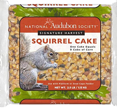 Squirrel Cakes - National Audubon Society 2.5 LB Signature Harvest Squirrel Cake