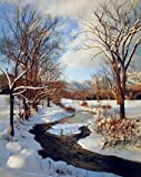 Scenery Winter Stream with Snow Landscape Wall Decor Art Print Poster (16x20)