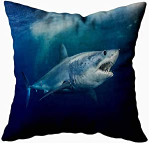 Jesmacti Christmas Decorative Pillow Covers,Decorative Pillow Case Cover Shark Short Fin Indoor and Outdoor Use,Contour Throw Pillow Covers 18X18 Inches
