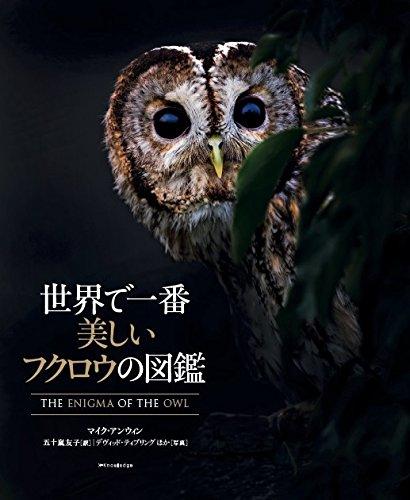 世界で一番美しいフクロウの図鑑