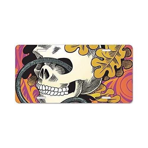 (KSLIDS Human Skull Entwined by Snake License Plate Holder - Alumina License Plate Frame, License Tag Holder)