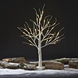 Pre-Lit LED Decorative Silver Birch Tree, Standing with Warm White Glow for Indoor or Outdoor Use (36 LED 60cm Silver Birch Tree)