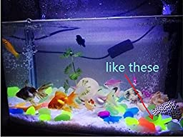 Glow in the Dark Conch Shell For Fish Tank, Luminous Conch Shell, Assorted 45 Pcs by LesyPet