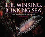 The Winking Blinking Sea:All About