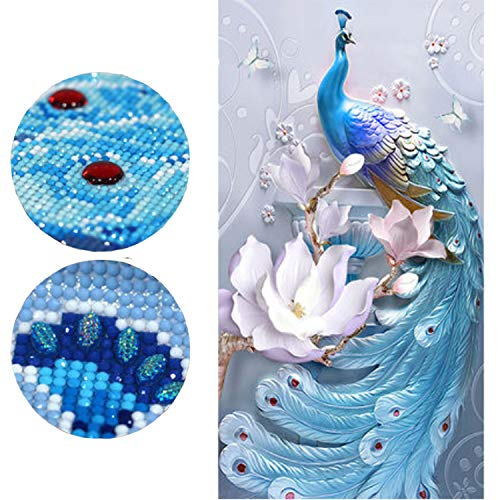 - Diamond Painting Kits for Adults 24X40'' Full Drill 5D DIY Paint-by-Number Kits with Diamonds for Home Wall Decors - Love of Peacock (60X100CM)