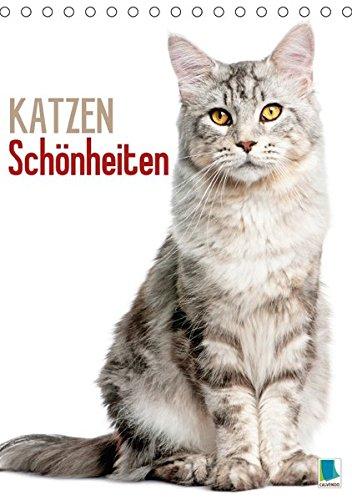 Katzen-Schönheiten (Tischkalender 2018 DIN A5 hoch): Eleganz und Anmut: Geliebte Stubentiger (Monatskalender, 14 Seiten ) (CALVENDO Tiere) [Kalender] [Apr 01, 2017] CALVENDO, k.A.