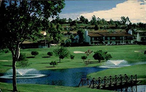 Fountains Leisure World Laguna Hills, California Original Vintage Postcard (World.com Leisure)