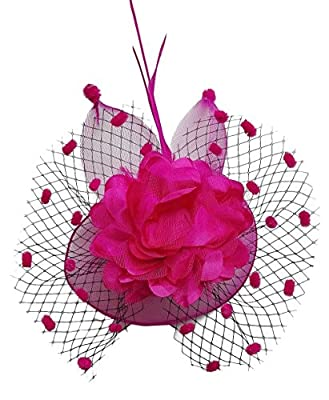 Coolwife Womens Fascinator Veil Flower Cocktail Tea Party Headwear