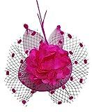 Coolwife Womens Fascinator Veil Flower Cocktail Tea Party Headwear
