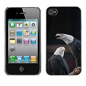 Caucho caso de Shell duro de la cubierta de accesorios de protección BY RAYDREAMMM - Apple iPhone 4 / 4S - American National Symbol