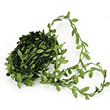 LEAFBABY 131 Feet Artificial Willow Leaf Foliage Vines Ivy Garlands for Home Garden Office Party Decorations and Wreath Handcrafts By