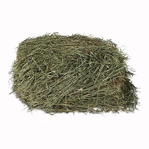 (Kms Hayloft Premium 2nd Timothy Hay for Small Animals ... (10 lb))