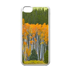 Golden Aspens Grand Teton National Park Wyoming IPhone 5C Cases, Iphone 5c Cases Fashionable Protection Cute Okaycosama - White