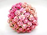 TH 50 pcs. Mixed Tone Pink Color Rose Mulberry