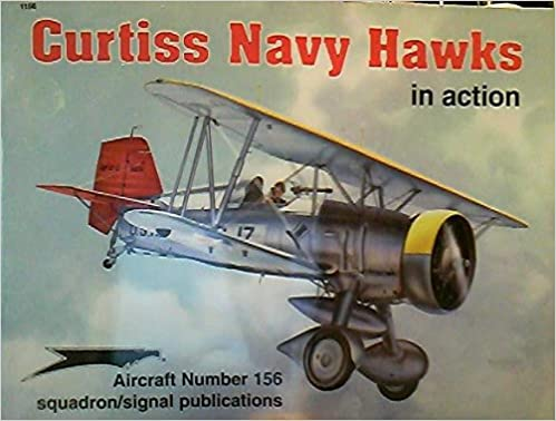 Curtiss Navy Hawks in Action - Aircraft No. 156