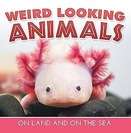 Weird Animals For Kids 8