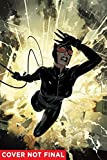 Catwoman Vol. 8: Run Like Hell
