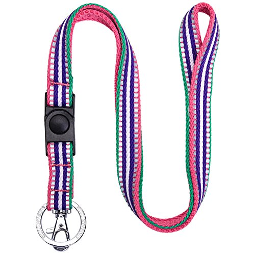 Blueberry Pet 3M Reflective Multi-Colored Stripe Pink Emerald and Orchid Men Women Fashion Non Breakaway Lanyard Keychain for Keys/ID Card/Badge Holder, 3/4