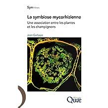 La symbiose mycorhizienne: Une association entre les plantes et les champignons (Synthèses) (French Edition)