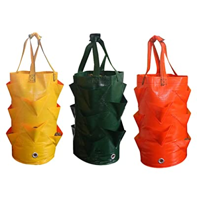 TRRAPLE Strawberry Growing Bag, 3 Pcs 3 Gallons Strawberry Grow Bag with Pockets, Hanging Tomato Herb Flower Strawberry Planting Pouch with Straps: Garden & Outdoor
