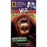 Really Wild Animals: Monkey Business
