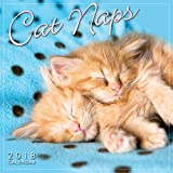 Cat Naps 2018 Mini Calendar (CS0193)