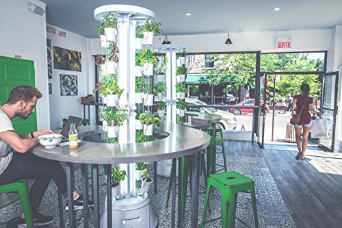 indoor hydroponic vegetable garden. Amazoncom Nutritower Vertical Indoor Hydroponics Garden System Patio Lawn Hydroponic Vegetable N