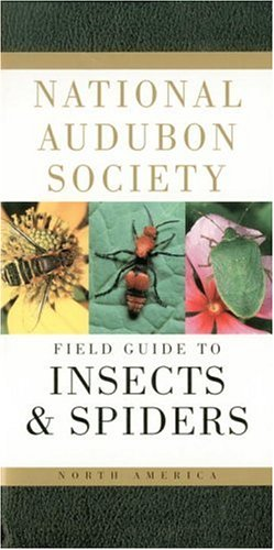 National Audubon Society Field Guide to North American Insects and Spiders (Audubon Society Field Guide) - Book  of the National Audubon Society Field Guides