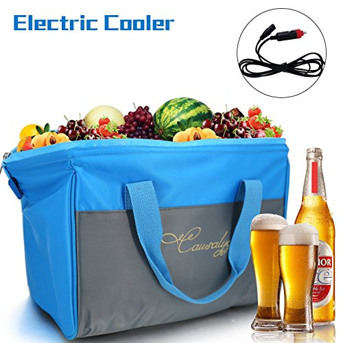 Causalyg 20 Can 12V DC Soft Portable Electric Cooler/Warmer 18 Liter Tote Bag with Thermoelectric System For Camping, Picnic